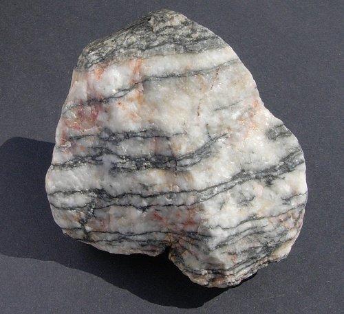 White Metamorphic Rock : Josh parker s environmental biology jackson springs