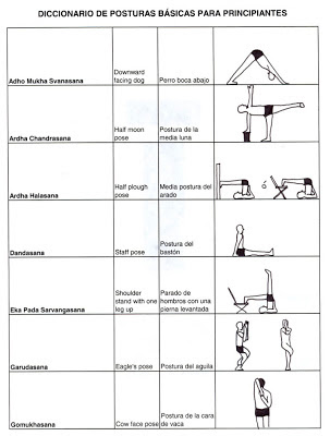 yoga posturas basicas