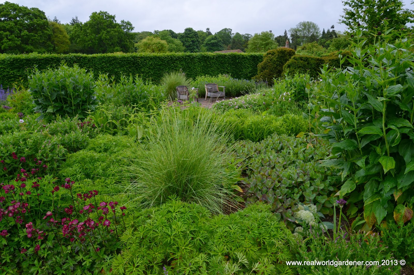 Real World Gardening Introduction To Garden Design With Ornamental Grasses