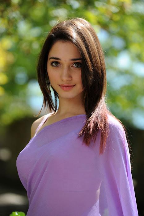 tamanna saree , tamannah new actress pics