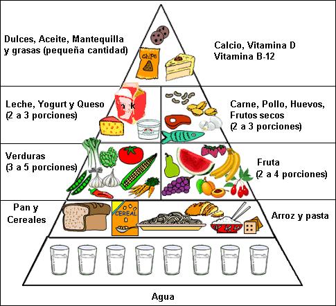 Proteinas Grasas Vitaminas y Minerales Grasas Vitaminas y Minerales