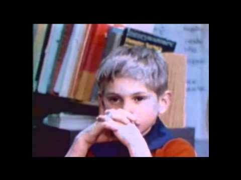 a class divided a brown eyed blue In the video a class divided, jane elliot a teacher from riceville, iowa engages her third grade class into a brown eyed/blue eyed experiment the experiment is to.