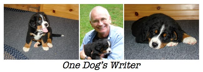 One Dog's Writer