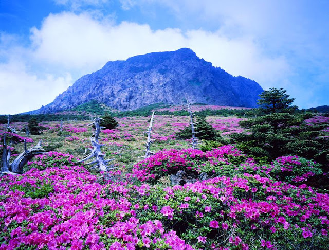 beautiful places in the world Jeju Island