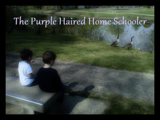 <center>The Purple Haired Home Schooler</center>