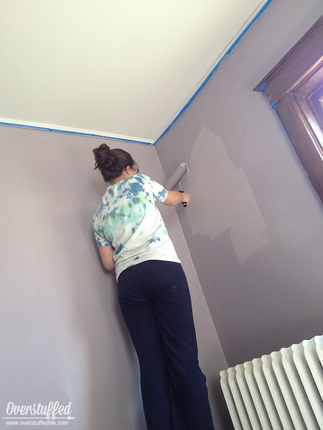 My Teenager Painting My Bedroom In Sherwin Williams Beguiling Mauve