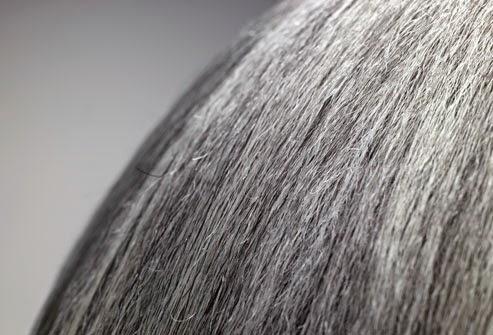 Cara Alami Mencegah & Mengobati Rambut Beruban