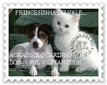 CINQUENTA E CINCO MIL VISITANTES !!!