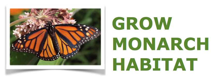 Grow Monarch Habitat