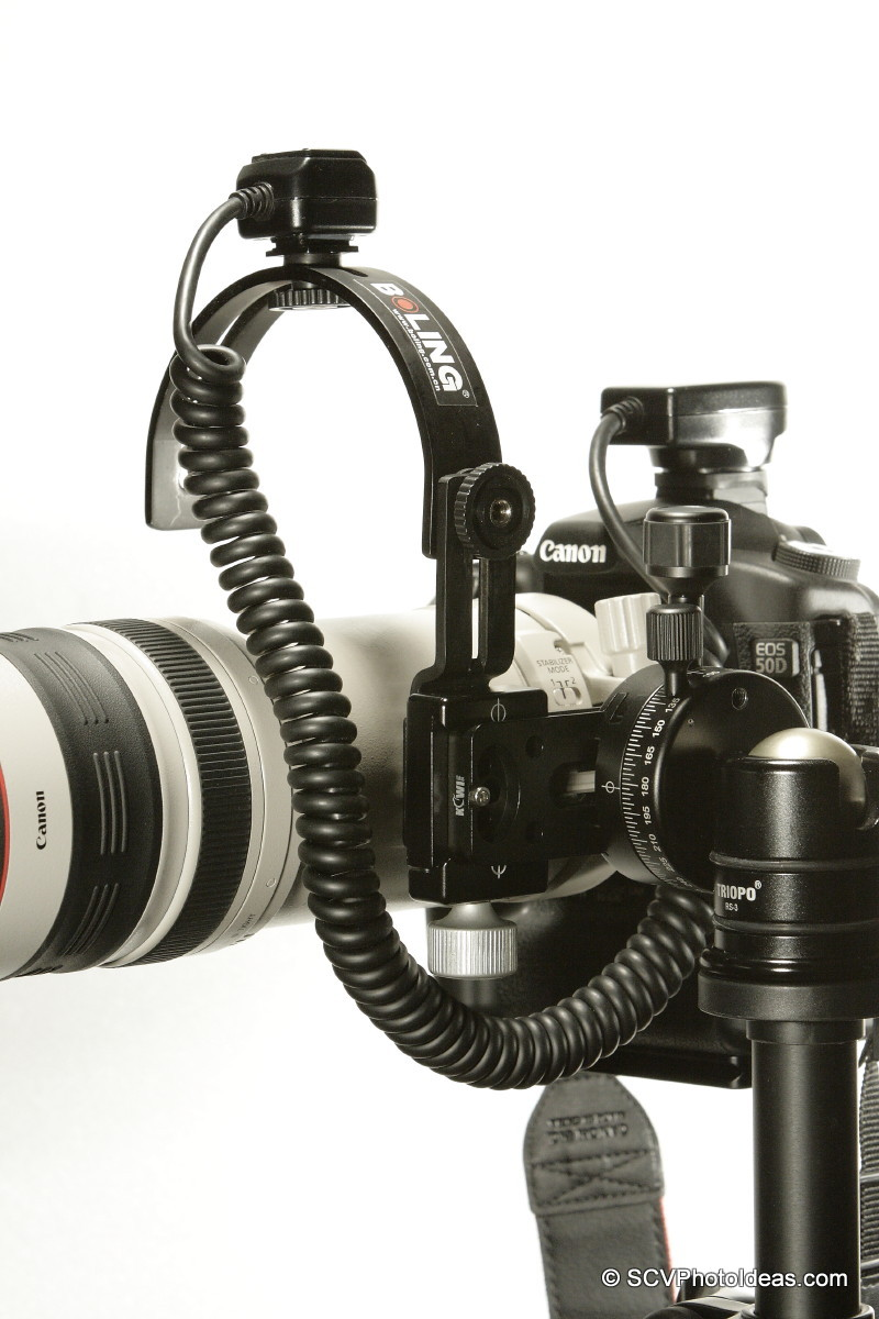 Flash bracket clamped on LP-100 side w/ off camera flash cord