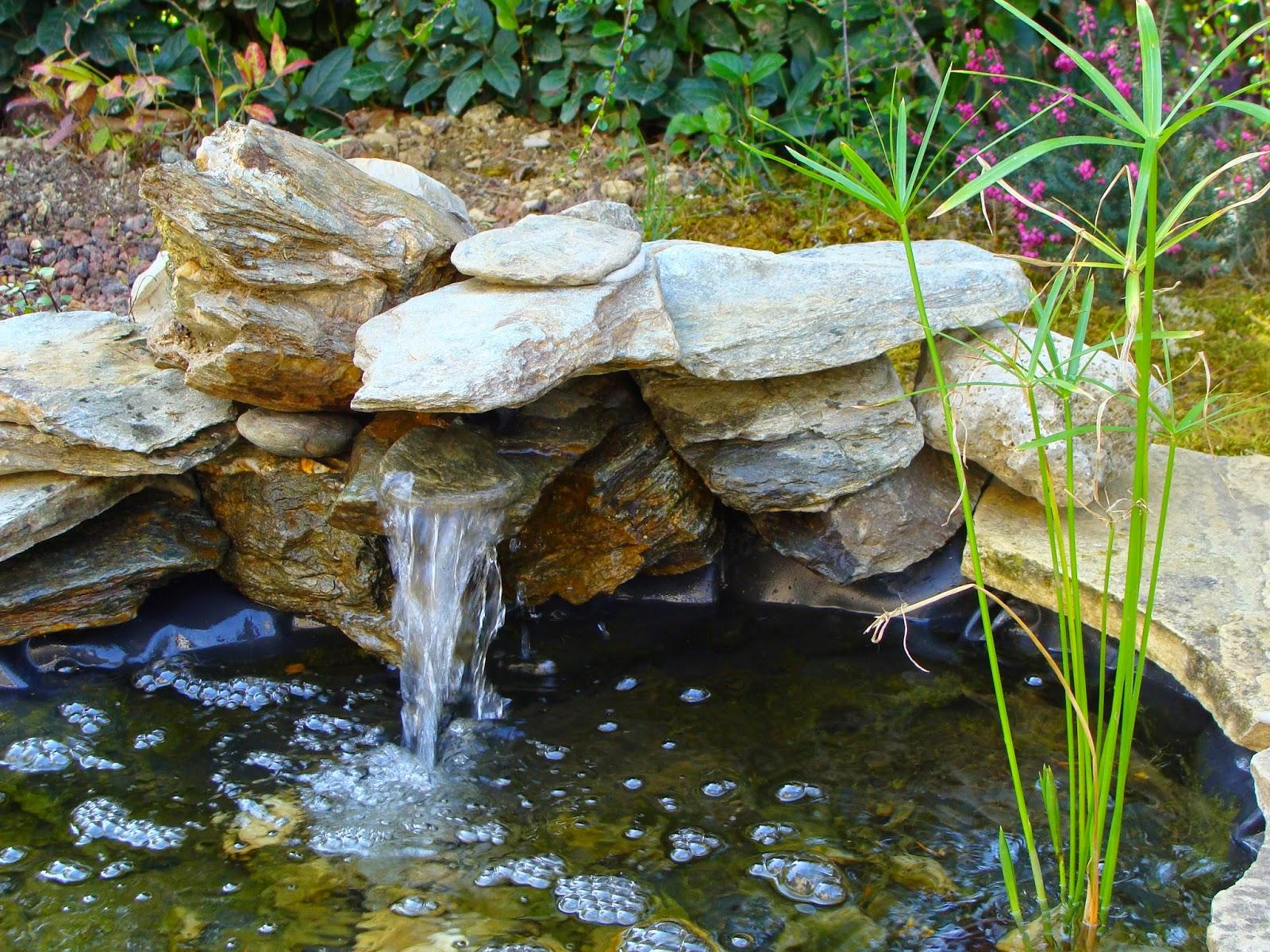 Jardine et ris l 39 cume des jours - Cascade de bassin fait maison ...