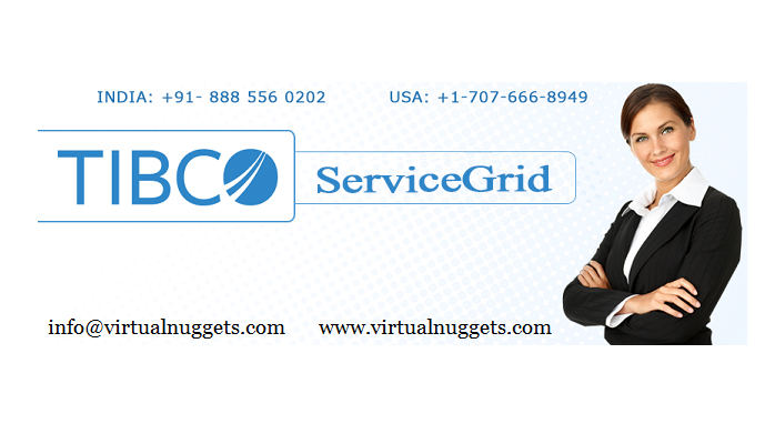 what-is-servicegrid