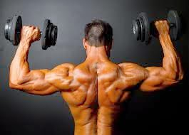 Methods to Build Lean muscle Rapidly