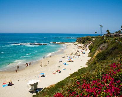 Laguna Beach Ca Dog Friendly Hotel