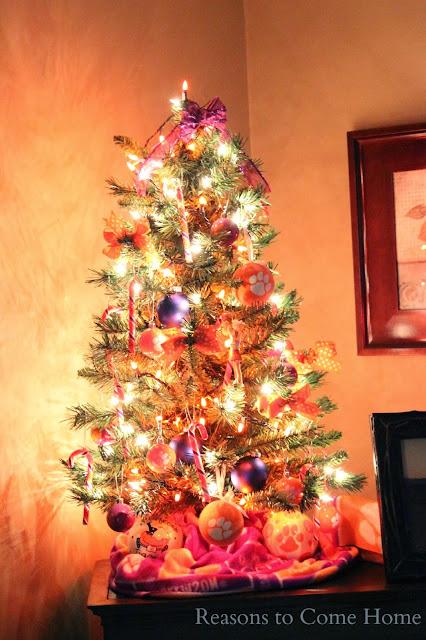 Clemson Tree