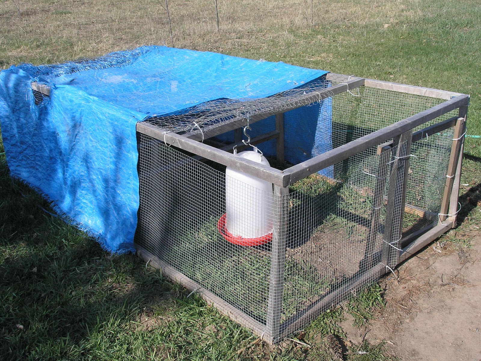 The cheerful agrarian simple light chicken tractor diy plans for Cheap chicken tractor