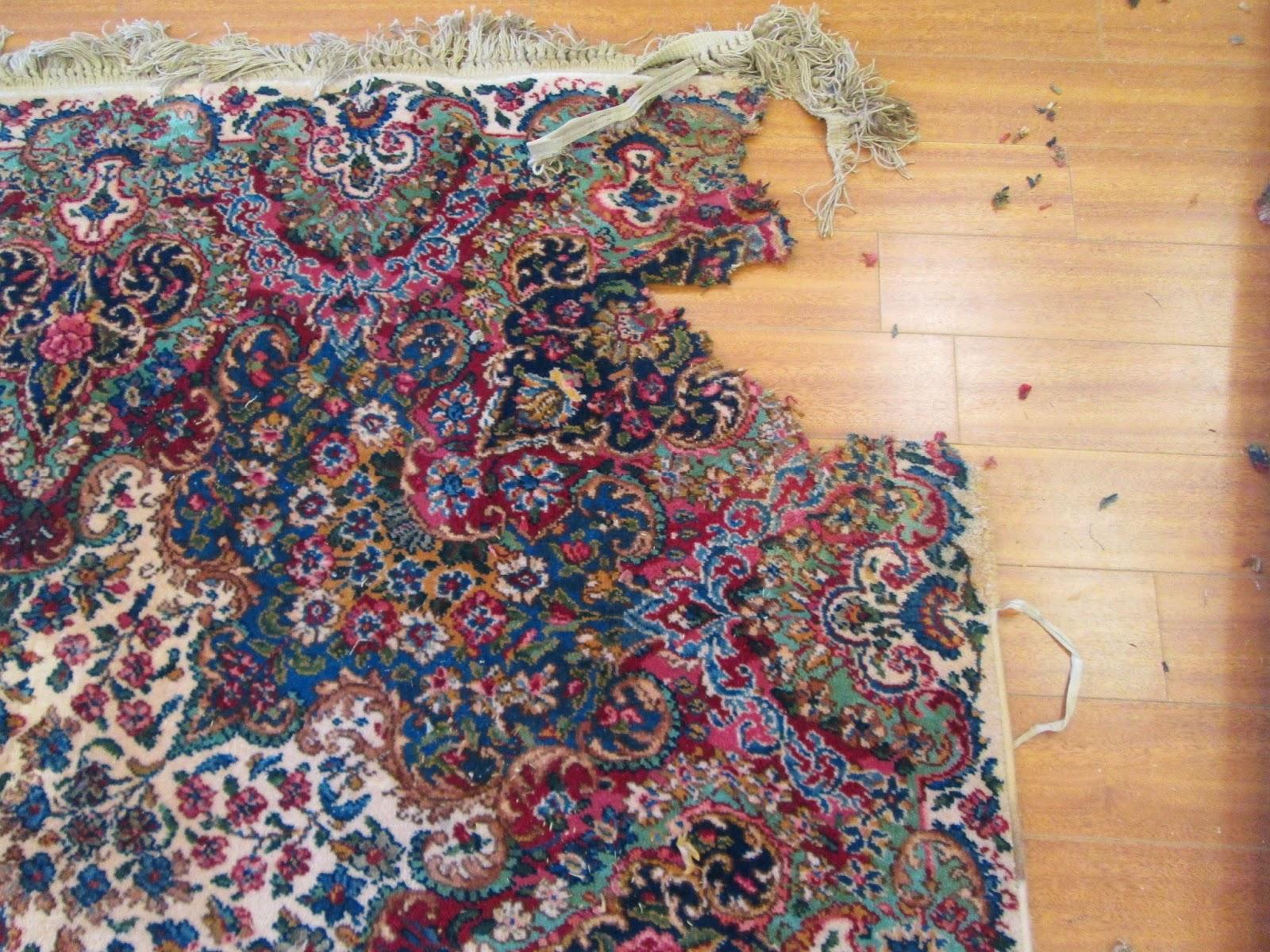 rug master: karastan area rugs cleaning and repair in los angeles