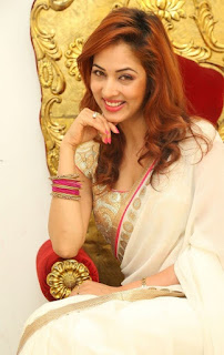 Actress Vidisha Srivastava Latest Pictures in Saree at Harinath Wedding Reception  10.jpg