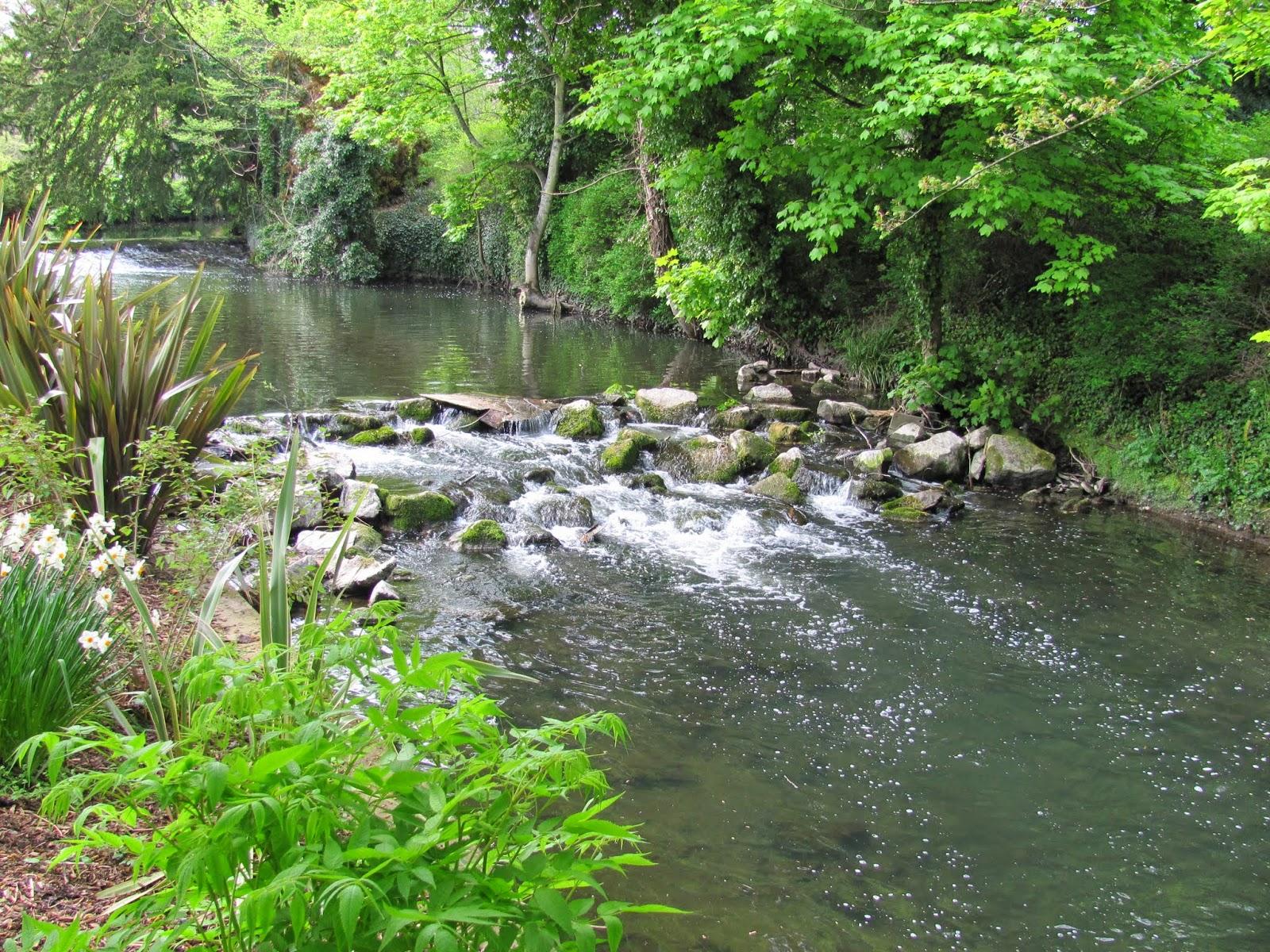 River Tolka National Botanic Gardens Dublin