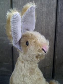 Bunny Love......
