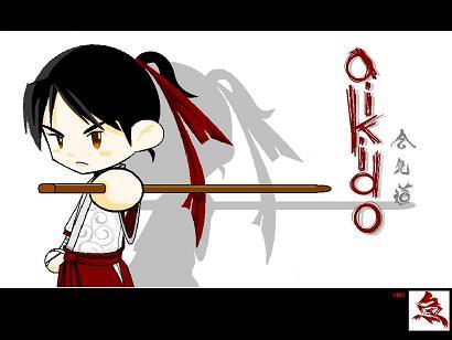 the karate kid blog aikido anime