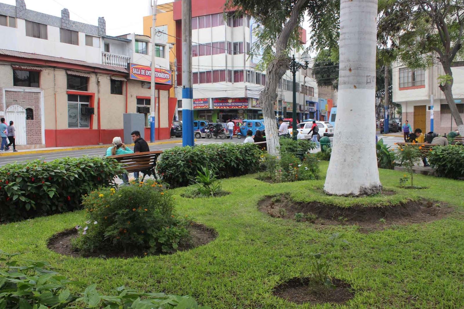 Huacho informa remodelan jardines de la plaza mayor de huacho for Jardines de plaza
