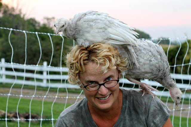 Young turkeys roosting on Gypsy Farmgirl's head