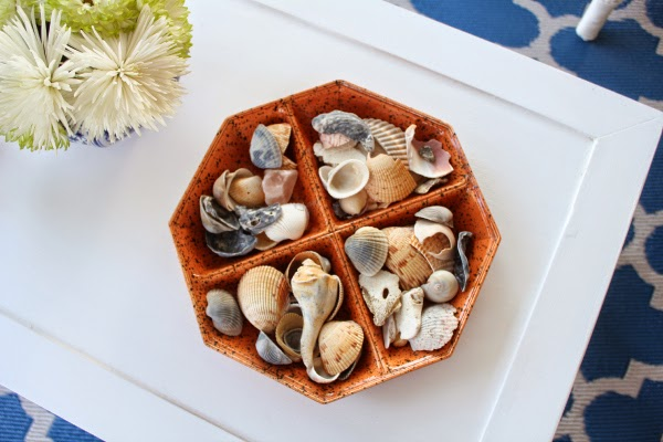 seashells-on-a-white-table