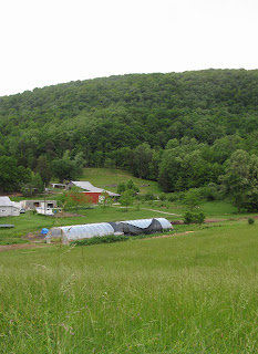 farm valley hoop house