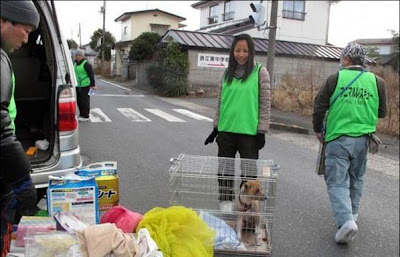 Animals Saver At Fukushima Daiichi nuclear Power Plant Seen On www.coolpicturegallery.us