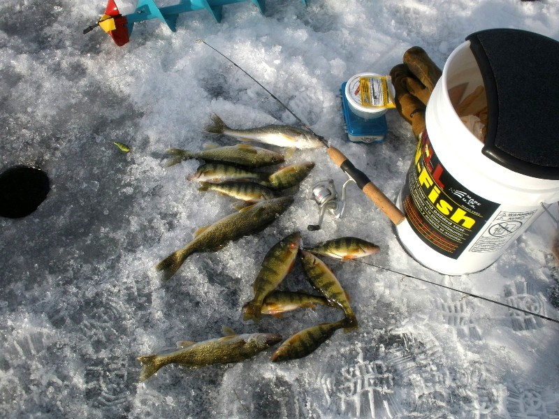 Bow narrows camp blog on red lake ontario nice to have for Red lake ice fishing resorts