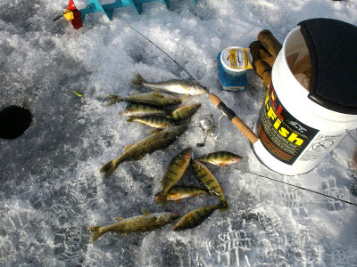 ice fishing Whitefish Lake, Ontario