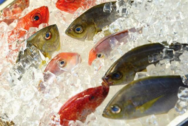 Konsumsi Ikan, Tumbuh Ke Atas Bukan Ke Samping
