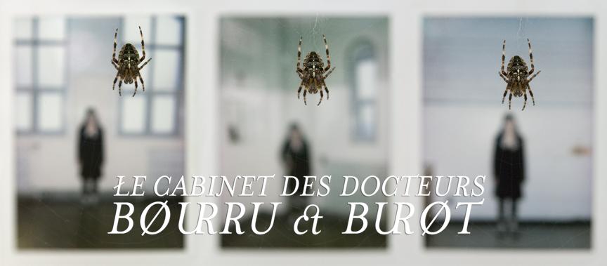 Le cabinet des docteurs Bourru et Burot