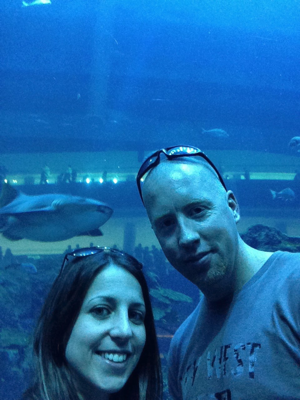 dubai aquarium shark selfie