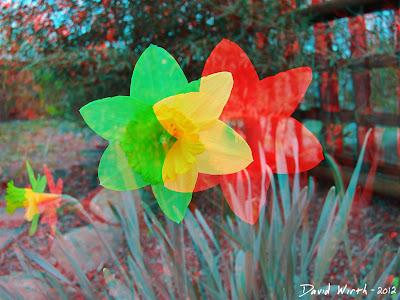 3D flower align