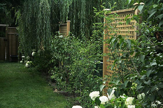 Ideas For Backyard Privacy Screens : Separation Seclusion Concealment Solitude Quiet