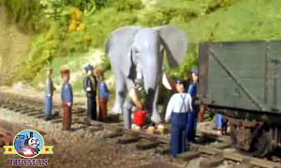 Workmen gave the gigantic traveling show elephant some fresh sandwiches and some nice cake snacks