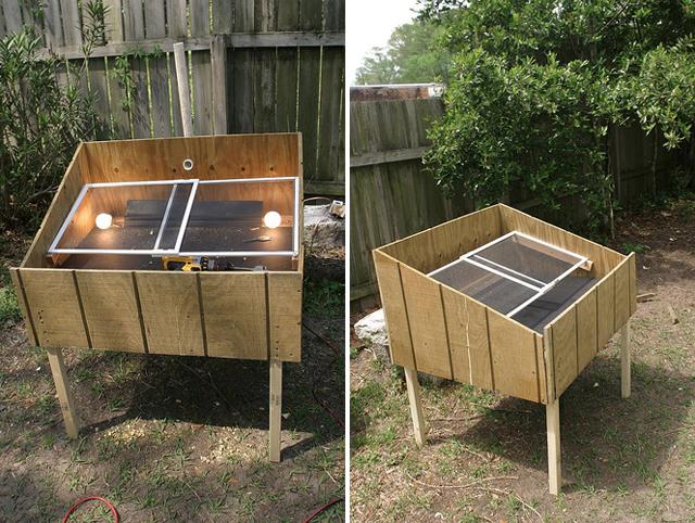 Desidratador solar de alimentos