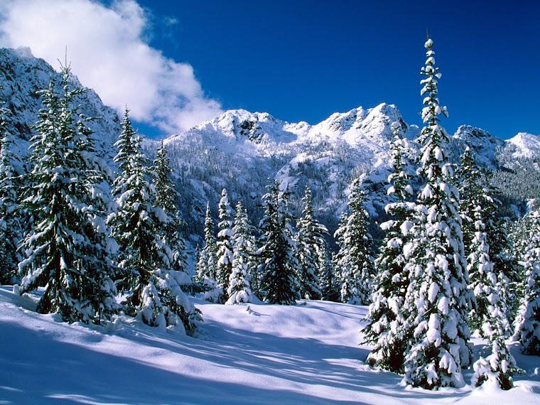 Ninge cu Iubire!