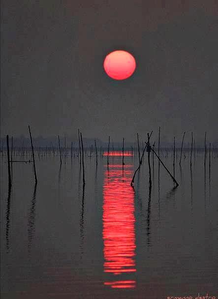 O Vermelho Pintando o Mar