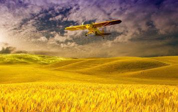 Avioneta Cessna sobre los campos de trigo - Plane