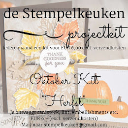 de Stempelkeuken Project Kit