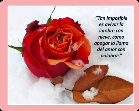 frases-de-amor-Imposible