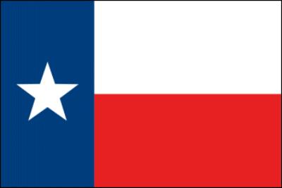 Online Defensive Driving in Texas
