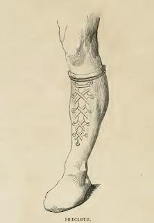 Historia del zapato.pilecasium
