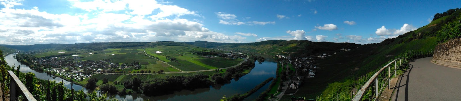 Ürziger panorama, Rhineland-Palatinate, Germany