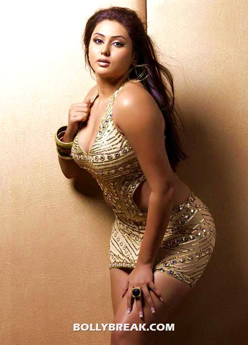 Namitha - (13) - POLL: Which Indian Actress has the best bottom?