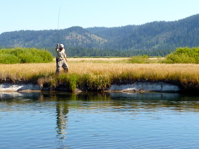Fly fishing bechler river yellowstone for Yellowstone fly fishing