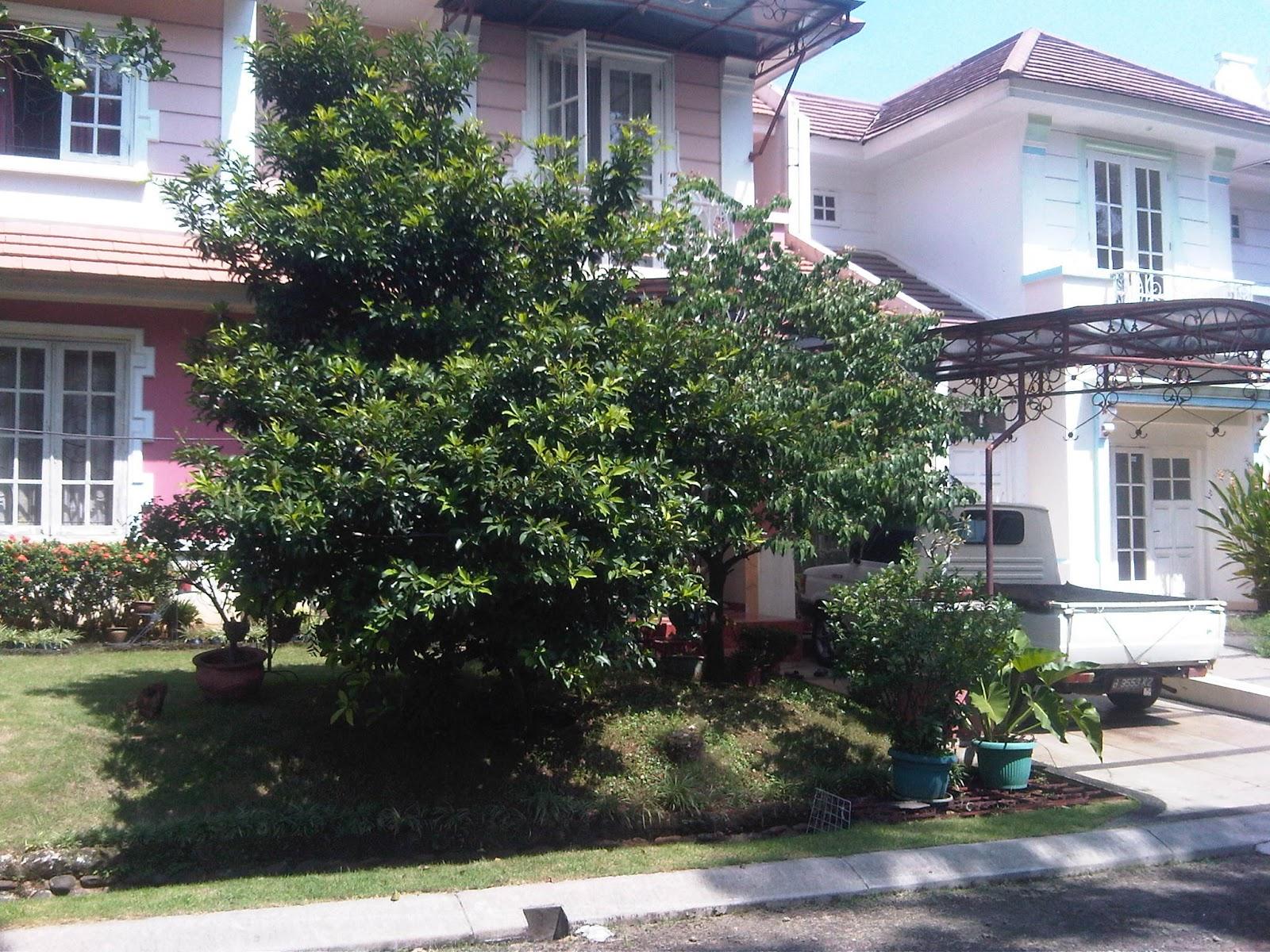 jual rumah murah siap disewa 3 tahun developer property